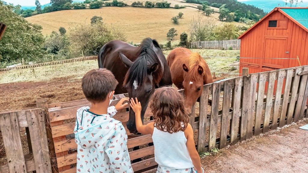 Quesería ecológica y granja de animales Los Caserinos. Villaviciosa