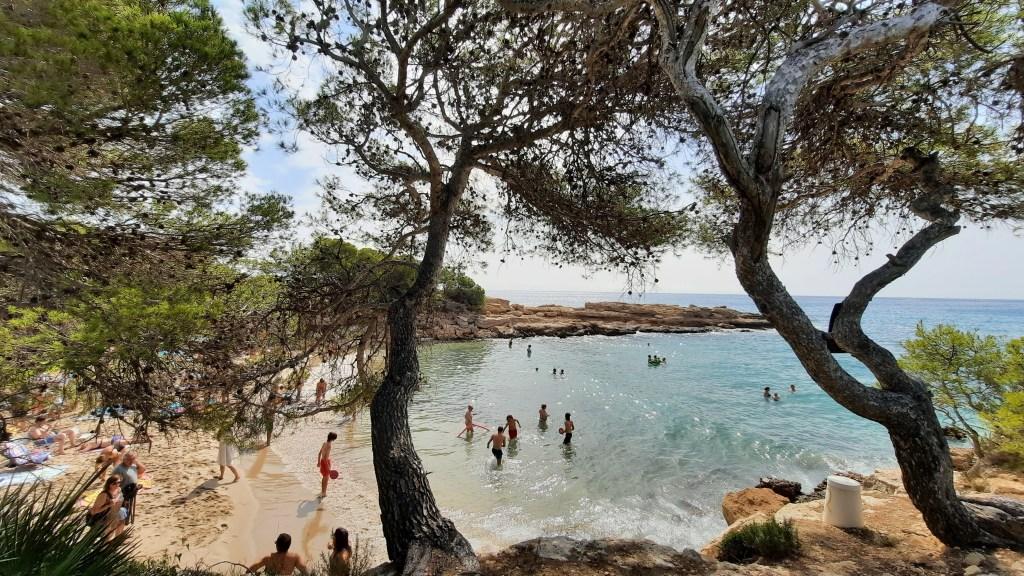 Cala lo ribellet, playa de arena en la ametlla de mar