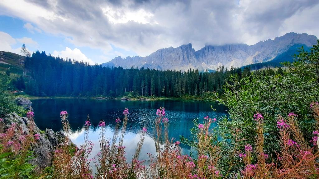 Flores bordeando el lago di Carezza en los Dolomitas italianos, Patrimonio de la Unesco
